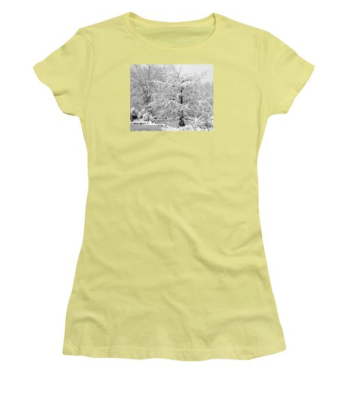 Women's T-Shirt (Junior Cut) featuring the photograph Whiteout In The Wetlands by John Harding