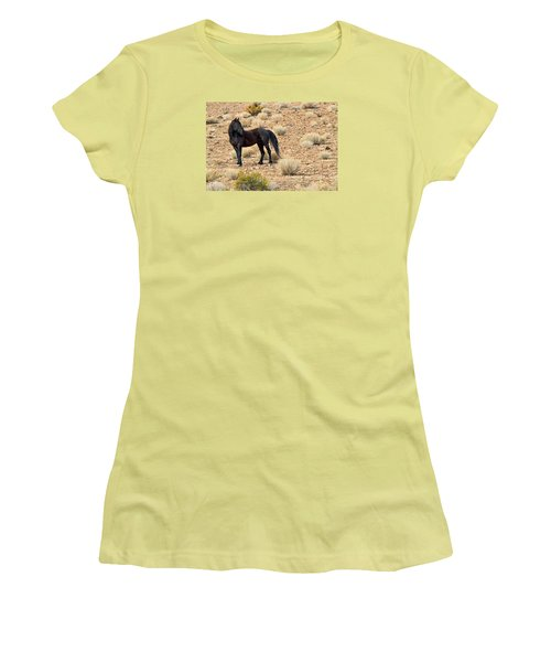 Wild Black Mustang Stallion Women's T-Shirt (Athletic Fit)