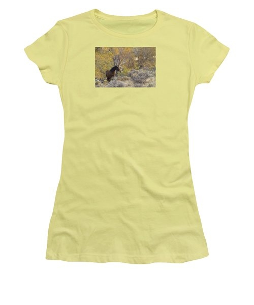 Wild Mustang Horse Women's T-Shirt (Athletic Fit)