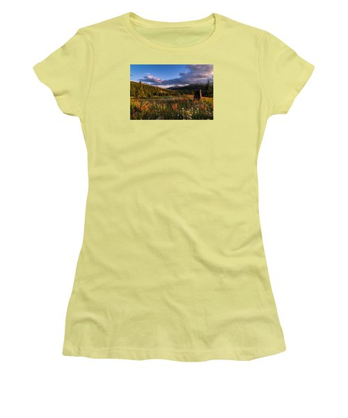 Wildflowers In The Evening Sun Women's T-Shirt (Athletic Fit)