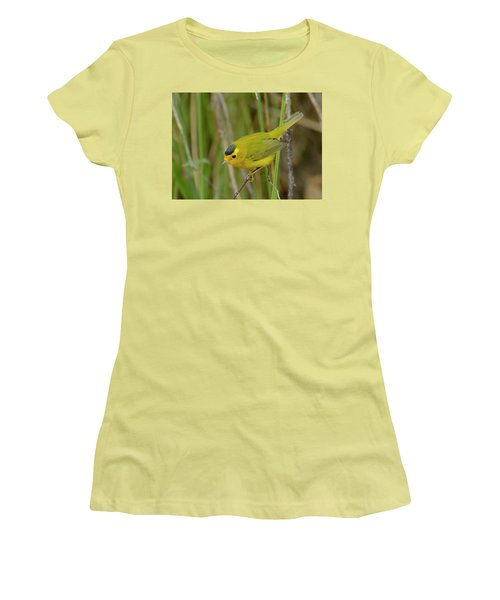 Wilson's Warbler Women's T-Shirt (Junior Cut)