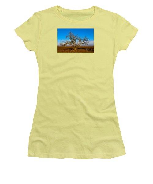Winter Apple Tree Women's T-Shirt (Junior Cut) by Suzanne Lorenz