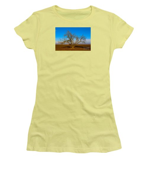 Winter Apple Tree Women's T-Shirt (Athletic Fit)