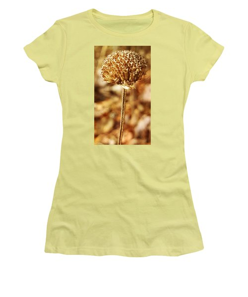 Winter Bee Balm Women's T-Shirt (Junior Cut) by Bruce Carpenter