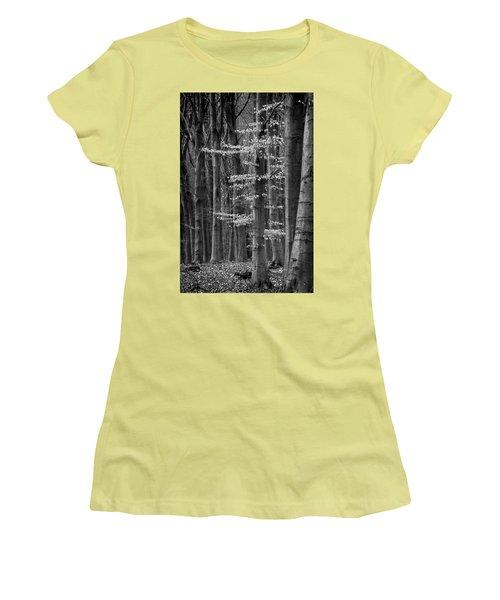 Winter Beech Women's T-Shirt (Junior Cut) by Inge Riis McDonald