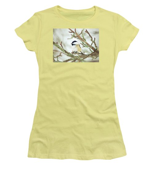 Winter Chickadee Women's T-Shirt (Athletic Fit)