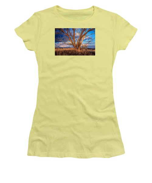 Winter Cottonwood Ranch Landscape Colorado Women's T-Shirt (Athletic Fit)