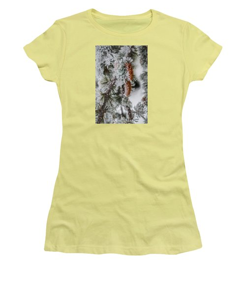 Winter Pine Cones Women's T-Shirt (Athletic Fit)