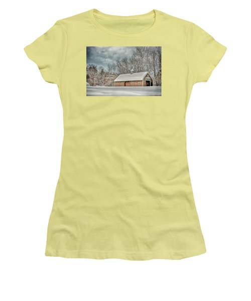 Winters Coming Women's T-Shirt (Junior Cut) by Tricia Marchlik