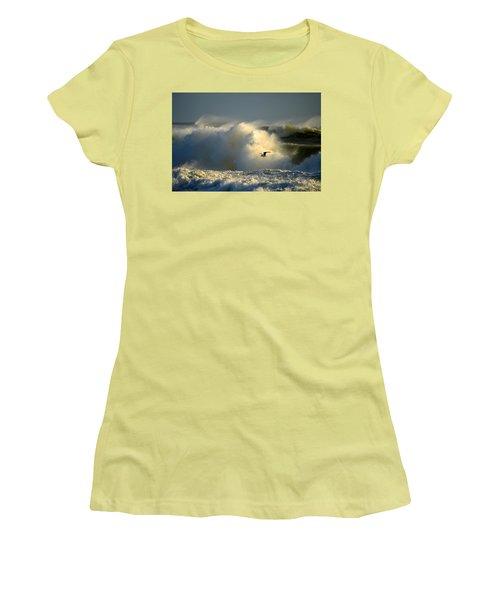 Winter's Passing Women's T-Shirt (Junior Cut) by Dianne Cowen
