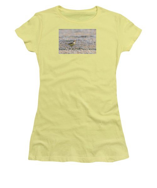 Women's T-Shirt (Junior Cut) featuring the photograph Yellow Crowned Wagtail Juvenile by Jivko Nakev