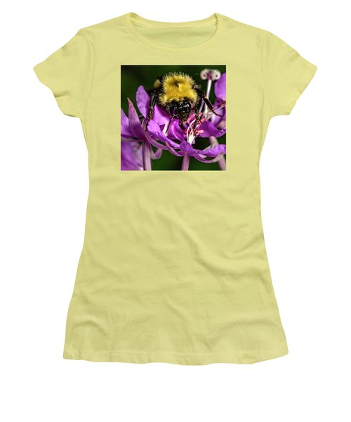 Women's T-Shirt (Junior Cut) featuring the photograph Yummy Pollen by Darcy Michaelchuk