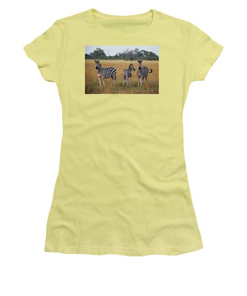 Zebra Family Women's T-Shirt (Junior Cut) by Bruce W Krucke