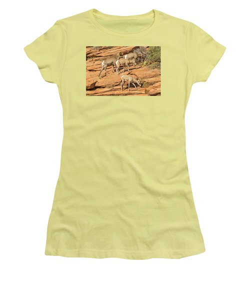 Zion Big Horn Sheep Women's T-Shirt (Junior Cut) by Peter J Sucy
