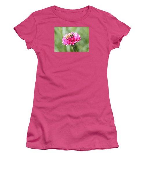 Honeybee On Pink Bachelor's Button Women's T-Shirt (Junior Cut) by Lucinda VanVleck