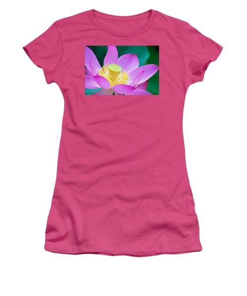 Purple Lotus Blossom Women's T-Shirt (Athletic Fit)