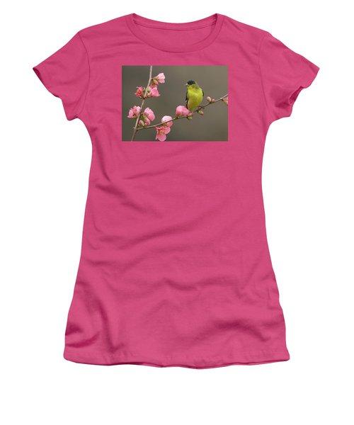 Lesser Goldfinch Women's T-Shirt (Athletic Fit)
