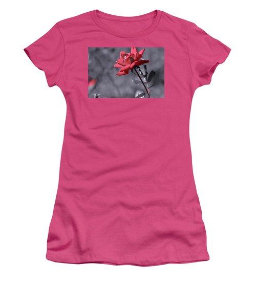 In Full Bloom 2 Women's T-Shirt (Junior Cut) by Warren Thompson