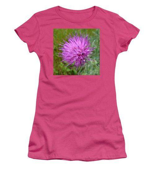Purple Dandelions 2 Women's T-Shirt (Junior Cut) by Jean Bernard Roussilhe