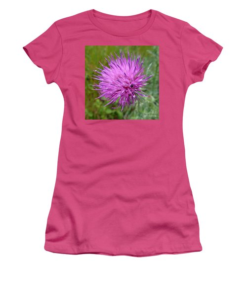 Purple Dandelions 2 Women's T-Shirt (Athletic Fit)