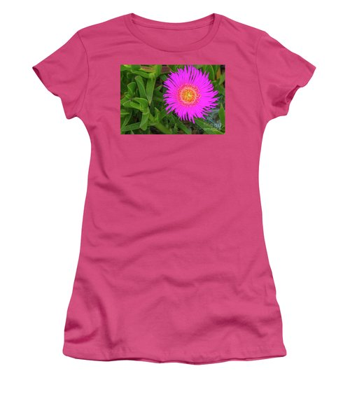 Sally-my-handsome Succulent Flower - Carpobrotus Acinaciformis Women's T-Shirt (Junior Cut) by Jivko Nakev
