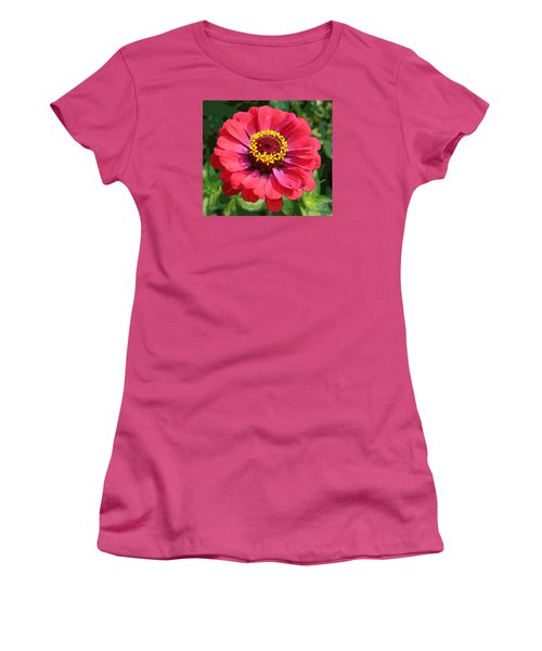 Zinnia Women's T-Shirt (Junior Cut) by Jeanette French