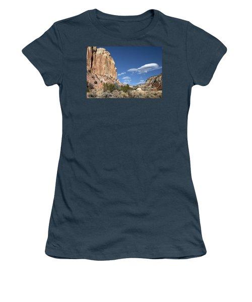 Way In The Distance Women's T-Shirt (Junior Cut) by Elvira Butler
