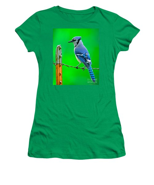 Blue Jay On The Fence Women's T-Shirt (Junior Cut) by Robert Frederick