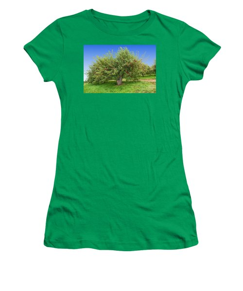 Large Apple Tree Women's T-Shirt