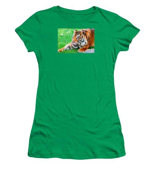 Pre-pounce Tiger Women's T-Shirt
