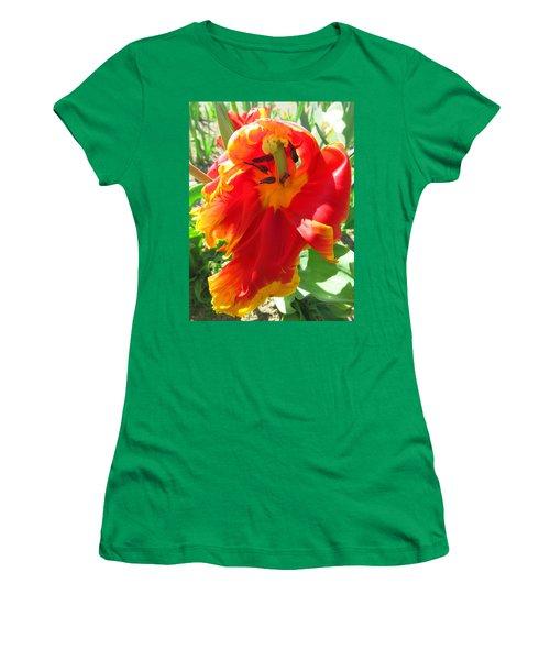 Garden Delight Women's T-Shirt (Junior Cut) by Brooks Garten Hauschild