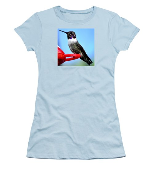 Women's T-Shirt (Junior Cut) featuring the photograph Male Anna On Perch by Jay Milo