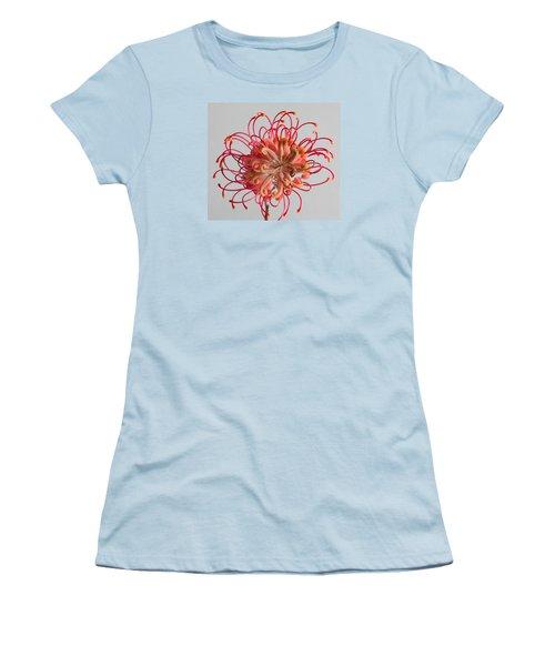 Grevillea Flower Women's T-Shirt (Junior Cut) by Shirley Mitchell