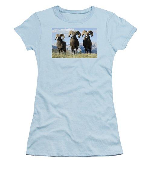 Big Horn Sheep Women's T-Shirt (Junior Cut) by Bob Christopher