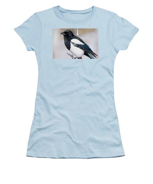 Black-billed Magpie Women's T-Shirt (Junior Cut) by Eric Glaser