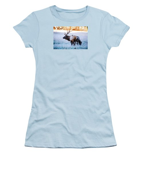 Women's T-Shirt (Junior Cut) featuring the photograph Bull Elk And Cow by Paul Mashburn
