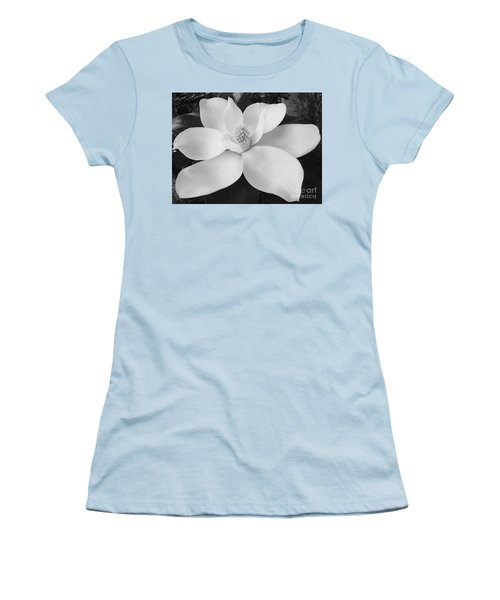 B W Magnolia Blossom Women's T-Shirt (Junior Cut) by D Hackett