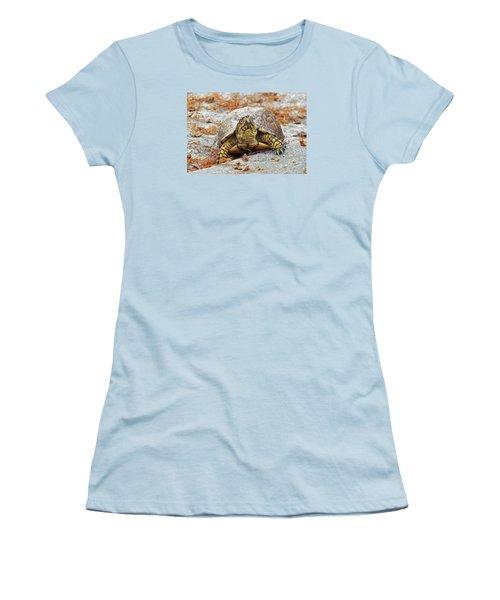 Women's T-Shirt (Junior Cut) featuring the photograph Eastern Box Turtle by Cynthia Guinn