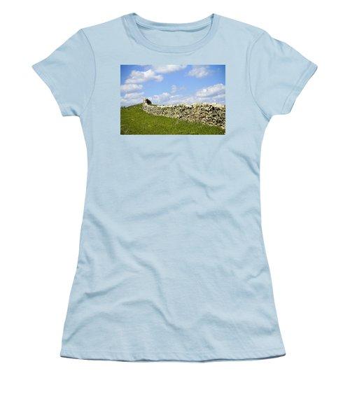 Women's T-Shirt (Junior Cut) featuring the photograph Flint Hills Rock Fence by Steven Bateson