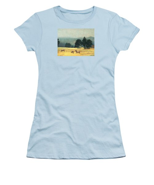 Impression Evergreen Colorado Women's T-Shirt (Junior Cut) by Dan Miller