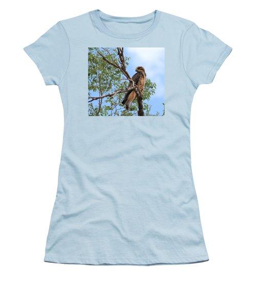 Juvenile Hawk Women's T-Shirt (Athletic Fit)