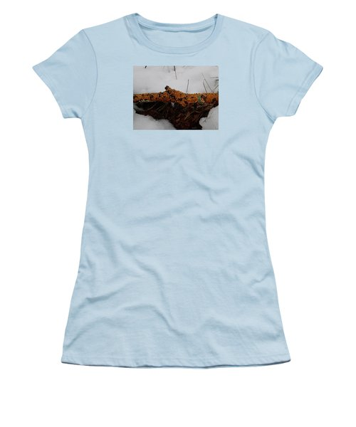 Lichen N'snow Women's T-Shirt (Junior Cut) by Robert Nickologianis