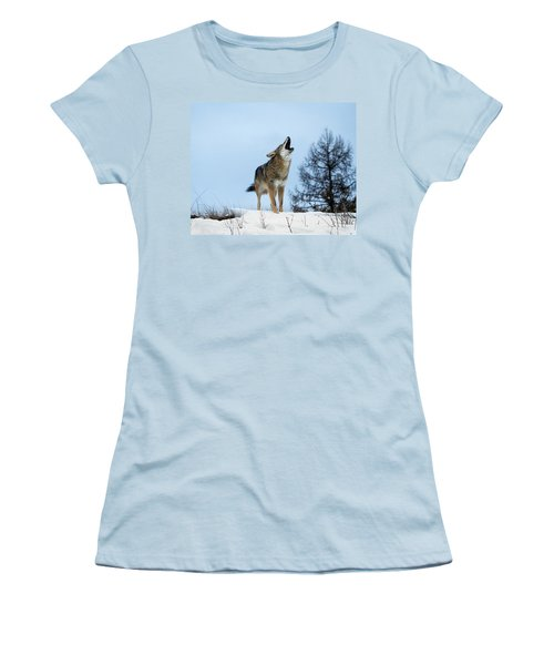 Women's T-Shirt (Junior Cut) featuring the photograph Morning Howl by Jack Bell