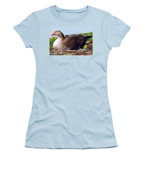 Women's T-Shirt (Junior Cut) featuring the photograph Newborn Peek by Elizabeth Winter
