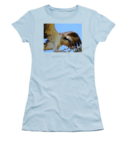 Women's T-Shirt (Junior Cut) featuring the photograph Osprey Youth by Dianne Cowen