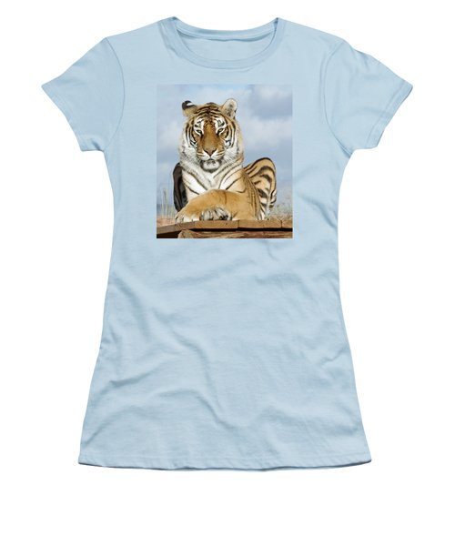 Out Of Africa Tiger 3 Women's T-Shirt (Athletic Fit)