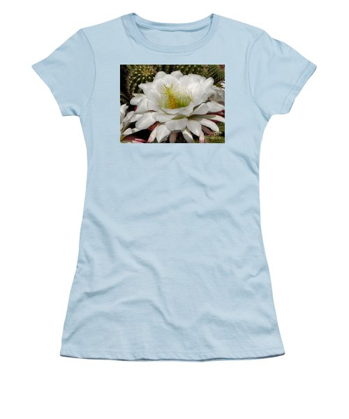 Women's T-Shirt (Junior Cut) featuring the photograph Petals And Thorns by Deb Halloran