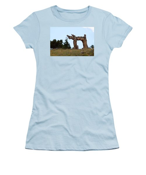 Pi In The Sky Women's T-Shirt (Athletic Fit)