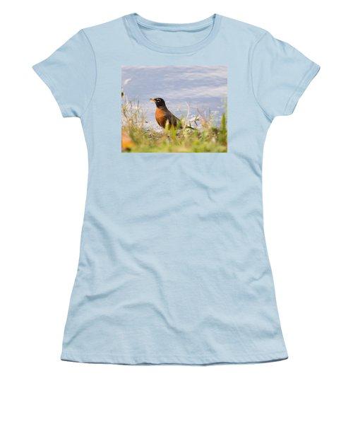 Women's T-Shirt (Junior Cut) featuring the photograph Robin Viewing Surroundings by John M Bailey