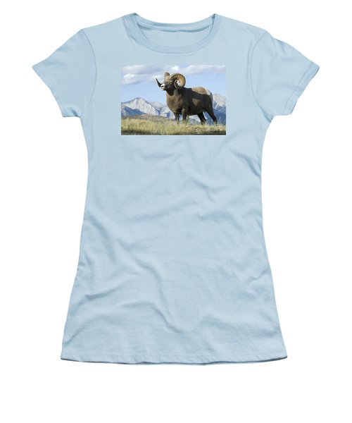 Rocky Mountain Big Horn Sheep Women's T-Shirt (Athletic Fit)